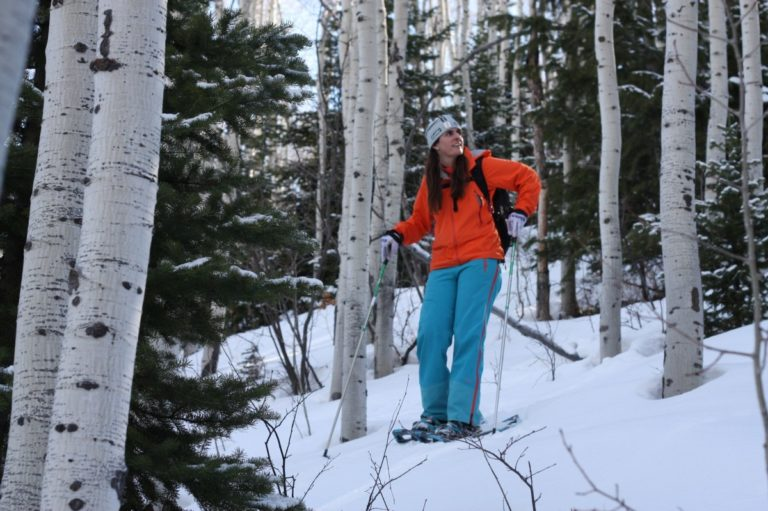 Man wearing skis, standing amidst trees