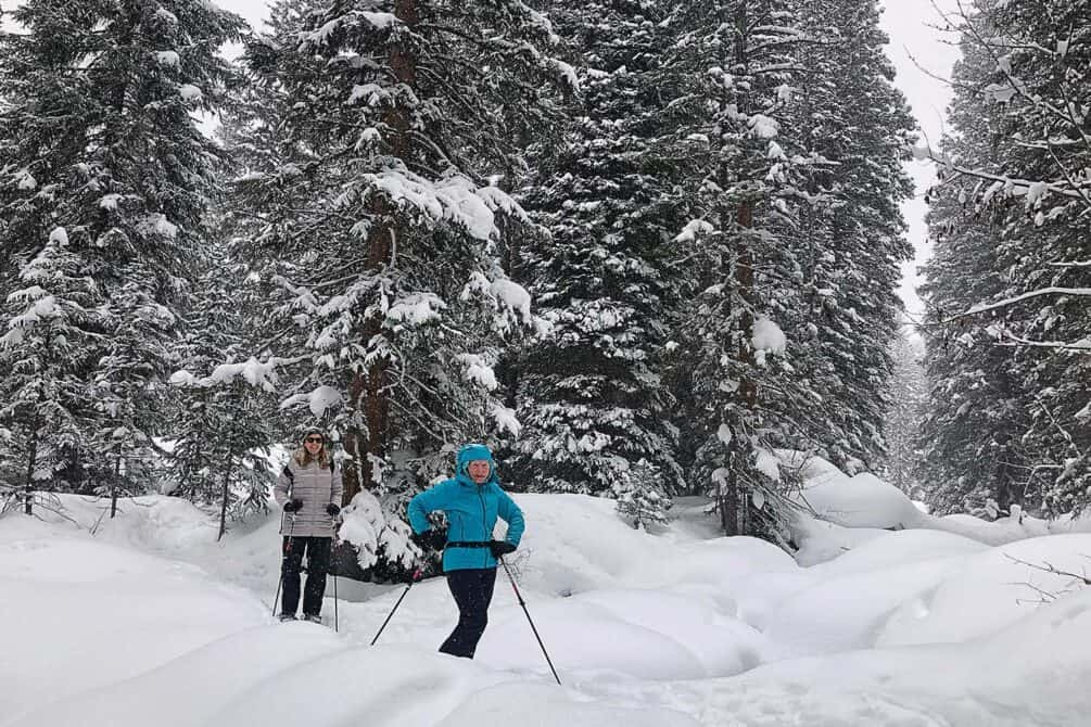 Two women outdoors, cross-country skiing, snow covered trees in the background